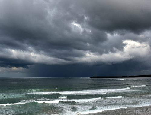 Help for local Noosa businesses during today's severe weather